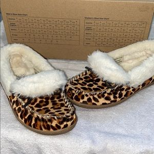 Bass Leopard Slippers